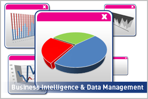 Business intelligence & Data Management